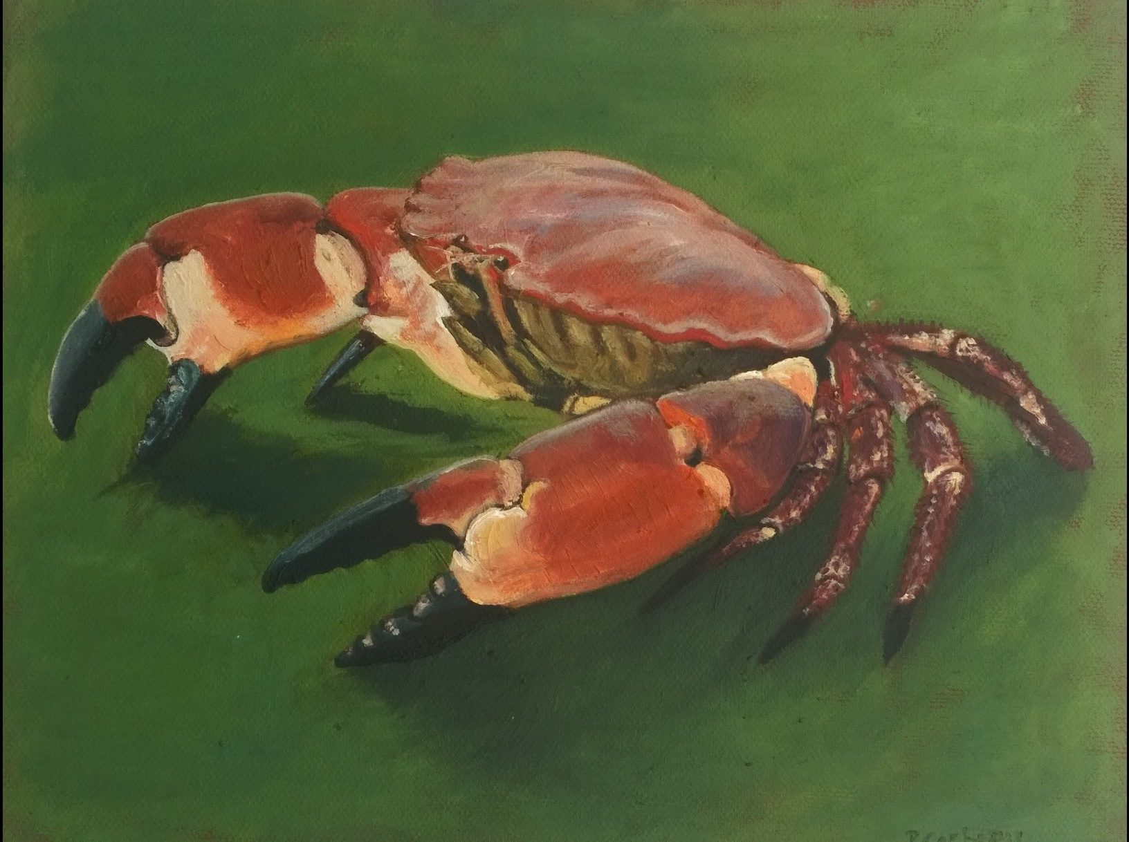 brown crab on green